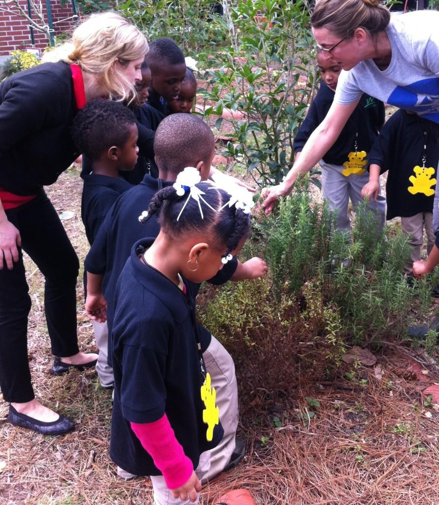 Visiting a Community Garden